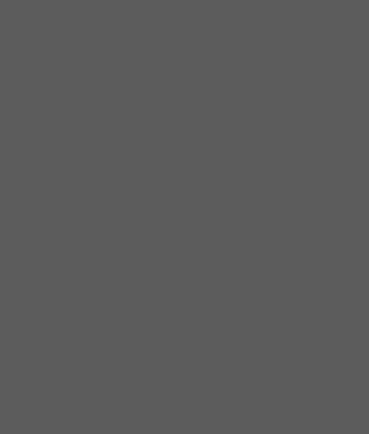 Firewall ikon